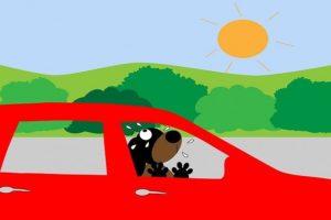 Samochód w lecie to jeżdżąca pułapka